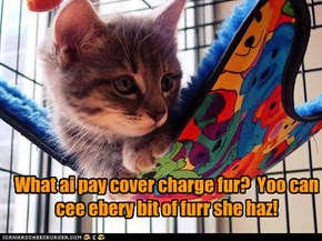 No cover charge an no suitz required?