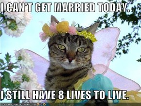 I CAN'T GET MARRIED TODAY.