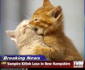 Breaking News - Vampire Kitteh Lose in New Hampshire