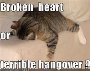 Broken  heart or terrible hangover ?