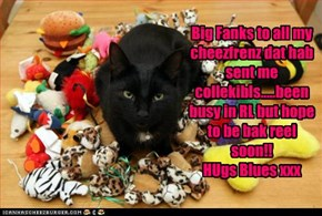 Big Fanks to all my cheezfrenz dat hab sent me collekibls.....been busy in RL but hope to be bak reel soon!!HUgs Blues xxx