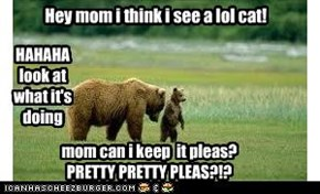 LOL Cats are just to funny not to want! Moms how ever...