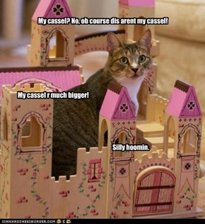 My cassel? No, ob course dis arent my cassel!