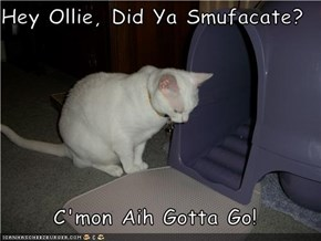 Hey Ollie, Did Ya Smufacate?  C'mon Aih Gotta Go!