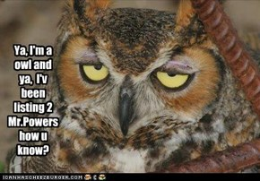 Ya, I'm a owl and ya,  I'v been listing 2 Mr.Powers how u know?