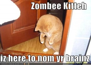Zombee Kitteh  iz here to nom yr brainz