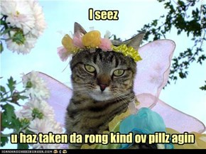 I seez
