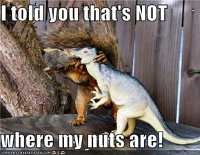 I told you that's NOT  where my nuts are!