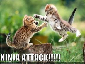 NINJA ATTACK!!!!!