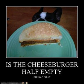 IS THE CHEESEBURGER HALF EMPTY