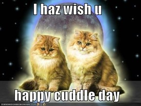 I haz wish u  happy cuddle day