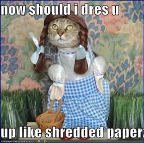 now should i dres u  up like shredded paperz?