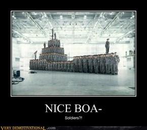 NICE BOA-