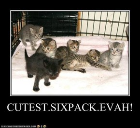 CUTEST.SIXPACK.EVAH!