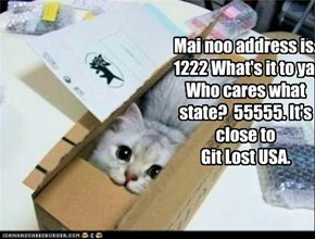 Mai noo address is: 1222 What's it to ya, Who cares what state?  55555. It's close to  Git Lost USA.
