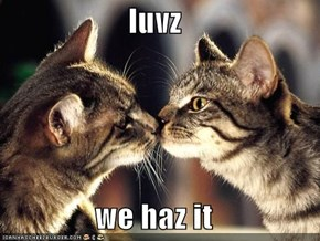 luvz  we haz it