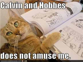 Calvin and Hobbes  does not amuse me.