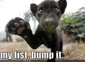 my fist. bump it.