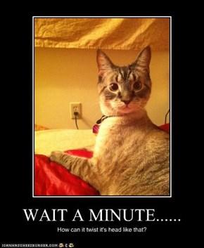WAIT A MINUTE......