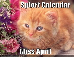 Splort Calendar  Miss April