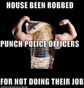 HOUSE BEEN ROBBED PUNCH POLICE OFFICERS FOR NOT DOING THEIR JOB