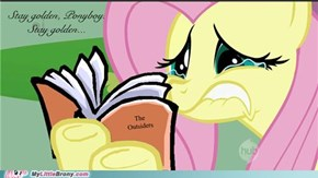 Stay Golden Fluttershy