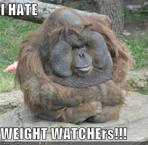 I HATE  WEIGHT WATCHErs!!!