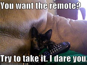 You want the remote?  Try to take it. I dare you.