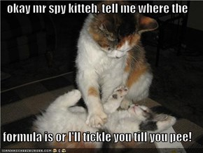 okay mr spy kitteh, tell me where the  formula is or I'll tickle you till you pee!