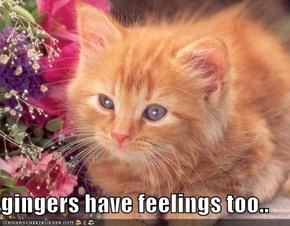 gingers have feelings too..