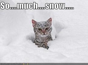 So....much....snow.....