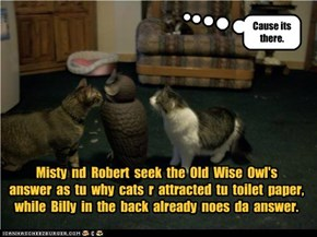 Misty  nd  Robert  seek  the  Old  Wise  Owl's   answer  as  tu  why  cats  r  attracted  tu  toilet  paper, while  Billy  in  the  back  already  noes  da  answer.