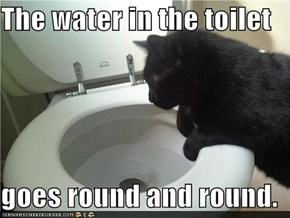 The water in the toilet  goes round and round.