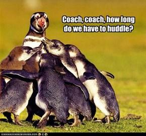 Coach, coach,