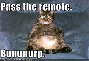 Pass the remote.  Buuuuurp.