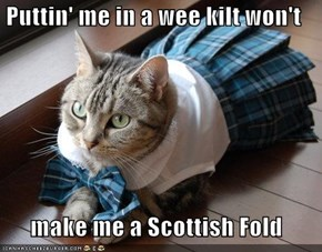 Puttin' me in a wee kilt won't   make me a Scottish Fold