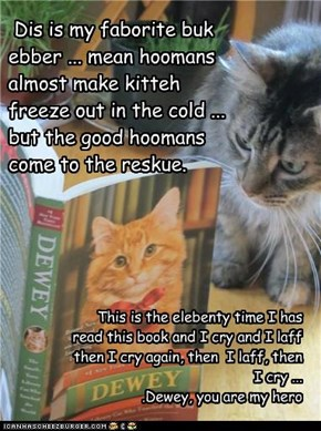 Dis is my faborite buk ebber ... mean hoomans almost make kitteh freeze out in the cold ... but the good hoomans come to the reskue.