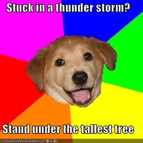 Stuck in a thunder storm?  Stand under the tallest tree