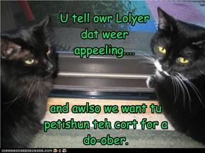 U tell owr Lolyer dat weer appeeling....