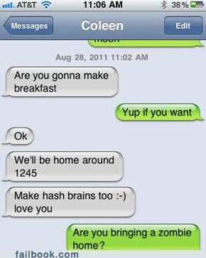 Hash brains