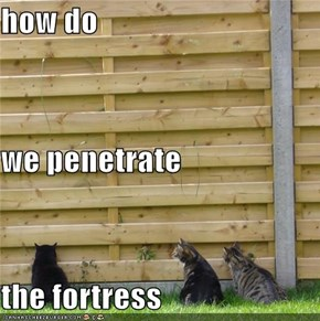 how do  we penetrate  the fortress