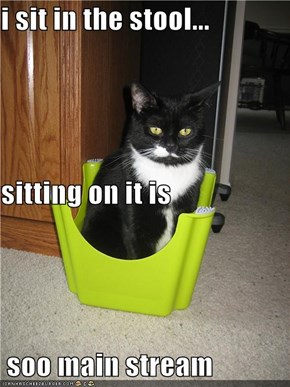 i sit in the stool... sitting on it is  soo main stream