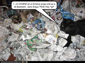 ? ..of COURSE all ur Krismus wraps end up in da Basement.. ware didjya TINK they *go*