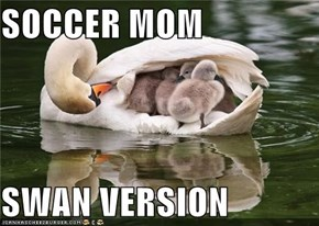 SOCCER MOM  SWAN VERSION
