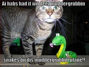 Ai habs had it wif deez muddergrubbin  snakes on dis muddergrubbin plane!!