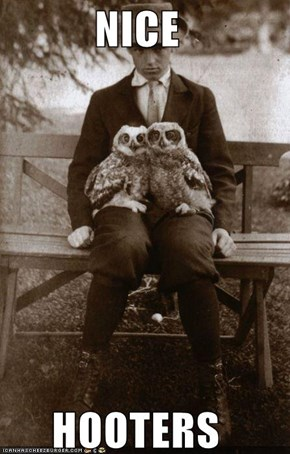 I Can't Resist a Man With a Nice Pair of Owls