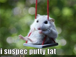 i suspec putty tat