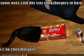 some ones said der was cheezburgers in here  i c no cheezburgers!