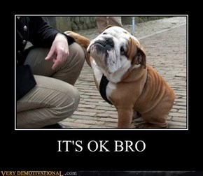 IT'S OK BRO