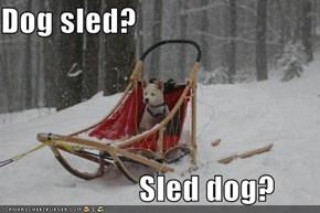 Dog sled?                                Sled dog?